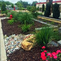 Oklahoma Landscape Architects Rain Garden 1